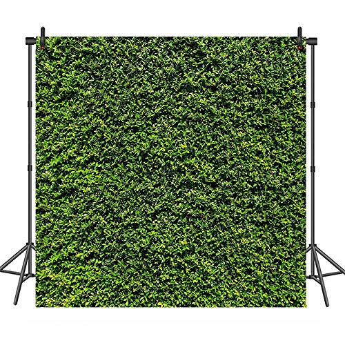 COMOPHOTO Green Leaf Wall Photography Backdrop 8x8ft Spring Green Grass Backdrops for Birthday Wedding Party Banner Decorations Photo Booth Background Prop ()