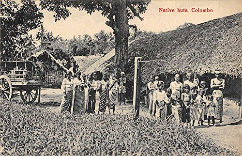 Colombo Ceylon Native Huts People Antique Postcard K72402 (Native Huts Postcard)