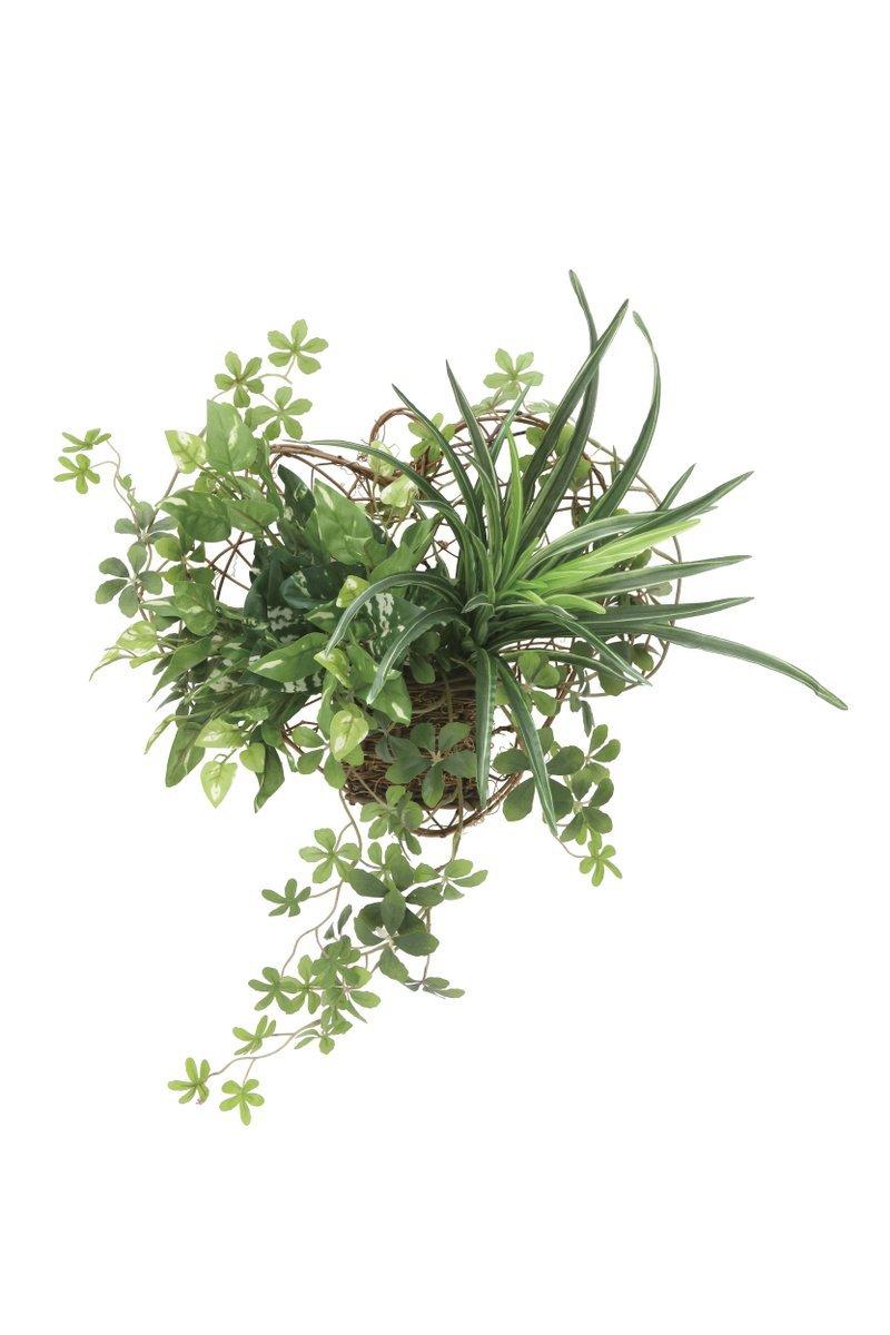 光触媒観葉植物 壁掛けミックスグリーン 壁掛けタイプ 光触媒 フェイクグリーン 御祝 内装 インテリア B07BNS6MXT