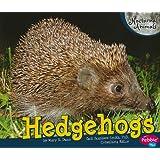 Hedgehogs (Nocturnal Animals)