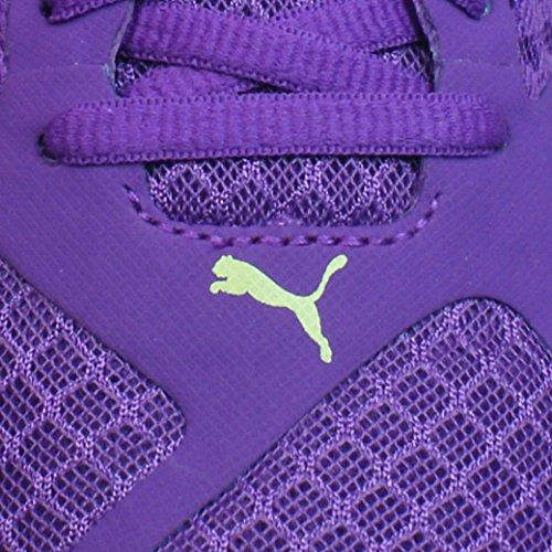 de running S Faas W femme Puma 500 Chaussures Purple YwqXZw4T