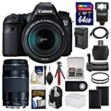 Canon EOS 6D Digital SLR Camera Body + EF 24-105mm is STM & 75-300mm III Lens + 64GB Card + Backpack + Flash + Batteries/Charger + Grip + Tripod Kit For Sale