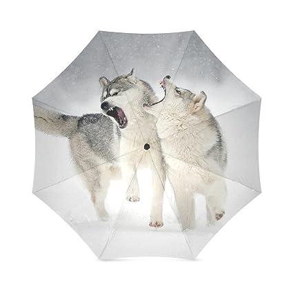 umbrella-windproof paraguas y plegable paraguas para al aire libre Totes Paraguas, 43,