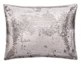 Calvin Klein Home Quartz Sequin Ombre, 12x16 Dec Pillow, Dark Silver