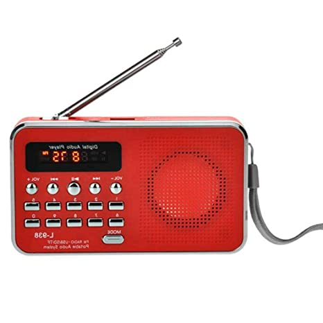 Amazon.com: Hello22 - Altavoz portátil mini USB AM/FM ...