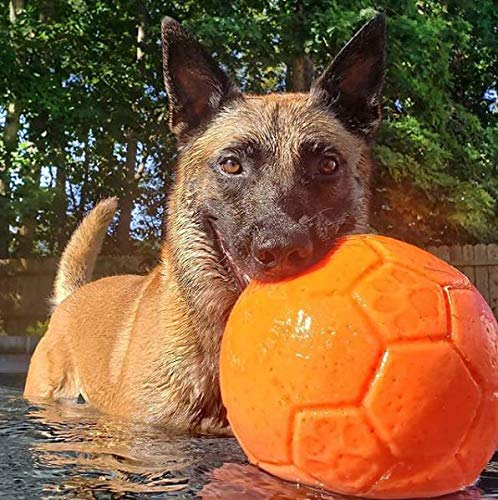 Jolly Pets Large Soccer Ball Floating-Bouncing Dog Toy, 8 inch Diameter, Orange