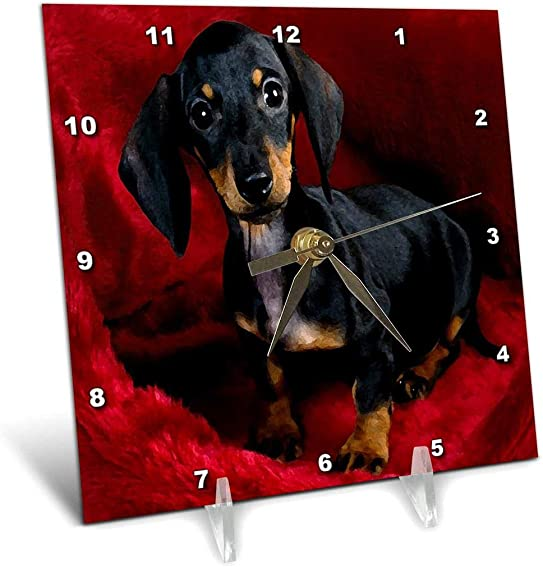 3dRose dc_203714_1 Print of Dachshund Painting Desk Clock, 6 by 6