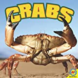Crabs, Jennifer Howse, 1616906944