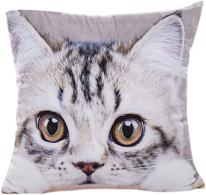 Cat Animal Pattern Pillowcase : Cat