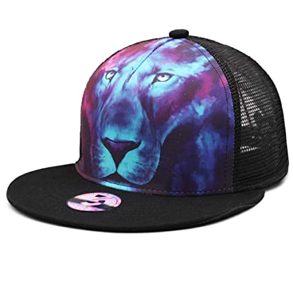 f737cf20414 Ann Lloyd Custom Baseball Cap Lions Printed Baseball Hat Adjustable Hat  (Blue Lions)