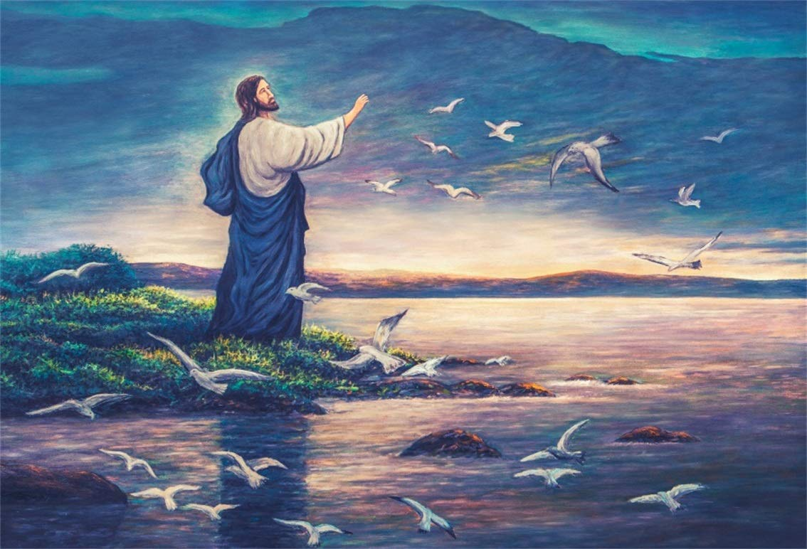 Image result for jesus birds