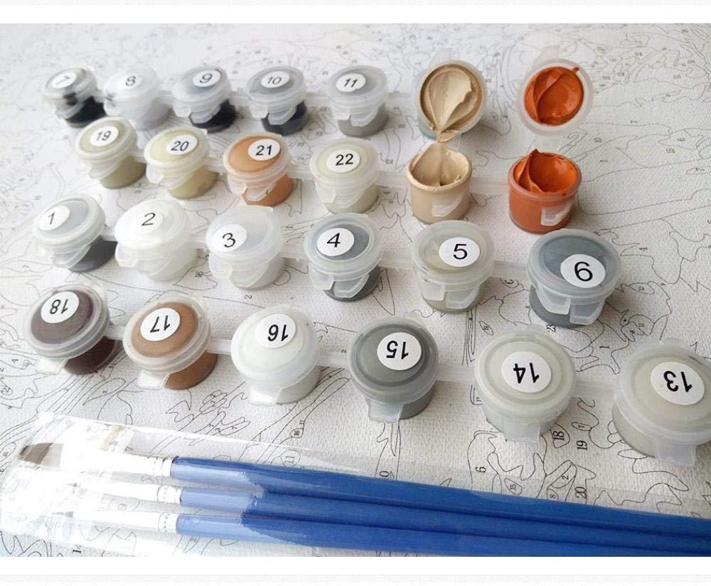 Yrhfys //Magnolia DIY Malen Nach Zahlen Kits Acrylfarbe Auf Leinwand Blumen Moderne Wandkunst Bild F/ür Zuhause Kunst-40 50(Rahmenlos)