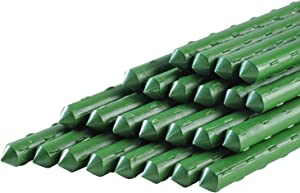 Ancectree Plant Stakes 5-Ft Garden Stakes Sturdy Plastic Coated Steel Plant Sticks Support for Potted Plants&Tomatoes,Trees,Cucumber,Fences,Beans,Pack of 25