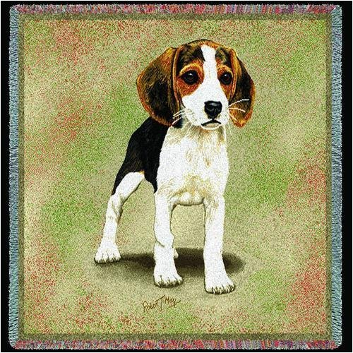 Pure Country 1200-LS Beagle Puppies Pet Blanket, Canine on Beige Background, 54 by 54-Inch by Pure Country