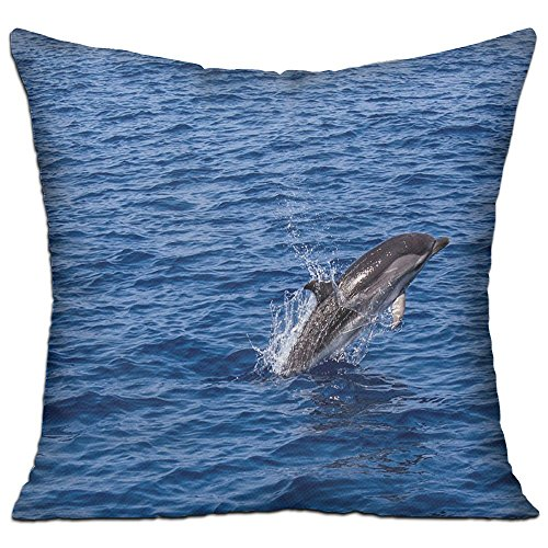 Dolphin Sea Cozy Sofa Pillow 18in X 18in (Including Pillow Inside) (Dolphin Sofa)