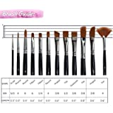 Aeoss Paint Brushes 12 Pieces Set Professional Paint Brush Round Pointed Tip Nylon artist acrylic brush for Acrylic Watercolor Oil Painting