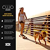 EzyDog Cujo Shock Absorbing Bungee Dog Leash - Best Dog Rope Training Lead - Reflective Trim for Nighttime Safety - Padded Pull Handle for Superior Comfort and Control