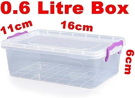 0,6 litro caja de plástico para alimentos envase x1: Amazon.es: Hogar
