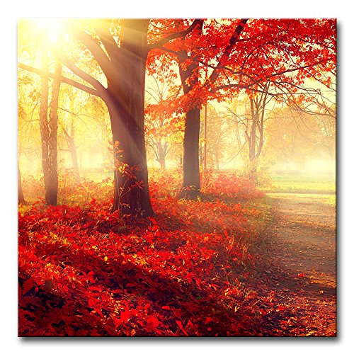Modern Canvas Painting Wall Art The Picture For Home Decoration Autumn Fall Scene Beautiful Maple Trees And Leaves Foggy Forest In Sunny Rays Landscape Forest Print On Canvas Giclee Artwork For Wall Decor - Big Leaf Trees