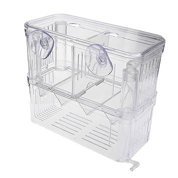 Kalttoy - Incubador de Acuario para pecera, Caja separadora para cría, Doble Aislante