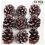 Christmas Pine Cones, Coxeer 72Pcs Christmas Hanging Pinecone Ornaments Xmas Tree Ornaments Party Supplies