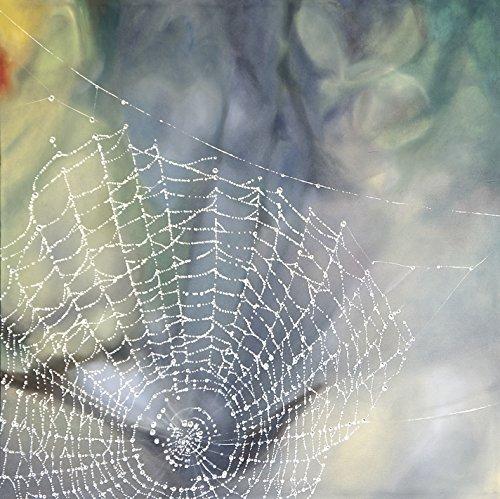 Dew Drops On by Bronle Crosby