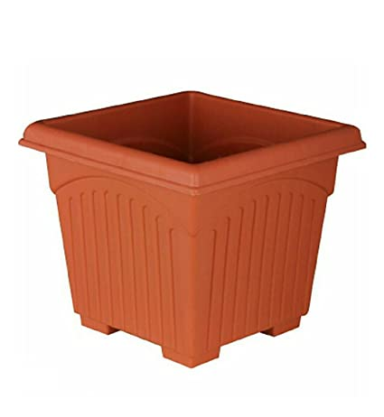 ASFA Deals Plastic Square Planter 10 inch (Pack of 3)