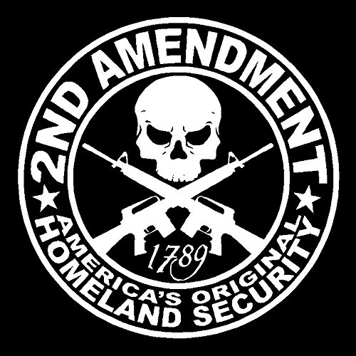 (2nd Amendment Vinyl Decal Car Truck Window Sticker Southern Rebel Battle America, Die Cut Vinyl Decal for Windows, Cars, Trucks, Tool Boxes, laptops, MacBook - virtually Any Hard, Smooth Surface)
