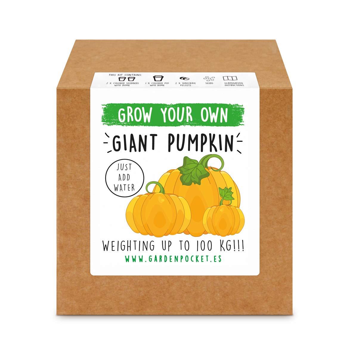 Garden Pocket - Kit Grow You Own GIGANT Pumpkin