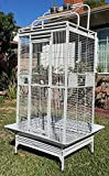 NEW Large Double Ladders Open Play Top Bird Wrought Iron Cage With Rolling Stand