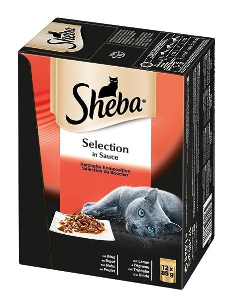 Sheba Alimento húmedo Selection in Sauce Gatos, Sabrosa creación en Salsa, Pack de 4