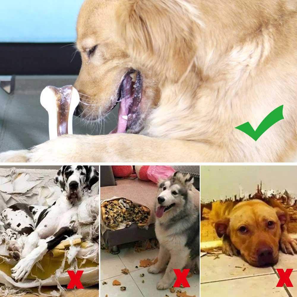 Cuidado bucal y Limpieza de Hueso Womdee Juguete Molar para Mascotas 1 Paquete Juguete Molar Stick para Perros peque/ños a Grandes