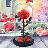 Rose ornaments,Glass eternal flower gift box Rose flower Send to your girl friend Decoration Christmas day Wedding Party-A 17x32cm(7x13inch)