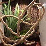 EONMIR 8-Foot Reptile Vines, Flexible Jungle Climber Long Vines Habitat Decor for Climbing, Chameleon, Lizards, Gecko (Thin Vines)