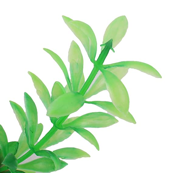 Amazon.com : eDealMax acuario de plástico pecera artificiales Planta Decoración Submarino ornamento 10pcs Verde : Pet Supplies