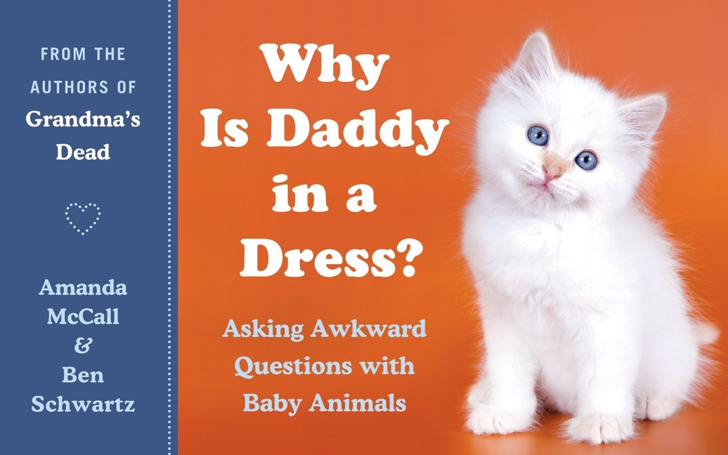 Why Daddy Dress Awkward Questions product image