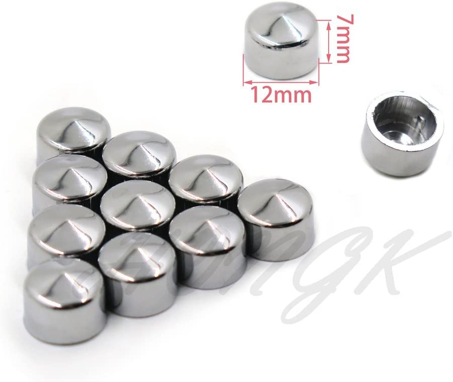 12 Piece Chrome Cap Dress Kit Compatible with 99-06 Harley Softail /& Dyna Primary Cover Bolt B076BF2LV2 HONGK