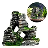 Best Decoration Fishes - Stebcece Mountain View Rockery Hiding Cave Tree Aquarium Review