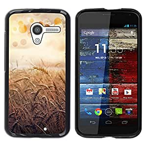 Paccase / SLIM PC / Aliminium Casa Carcasa Funda Case Cover - Nature Beautiful Forrest Green 55 - Motorola Moto X 1 1st GEN I XT1058 XT1053 XT1052 XT1056 XT1060 XT1055