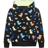 Ovovod Dinosaur Sweatshirts Boys Long Sleeve Hoodies Casual Pullover Tops for 3-14 Years Kids