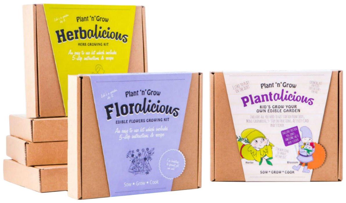 Pflanze n-Grow-Familie, Grow Your Own, 3 Stück