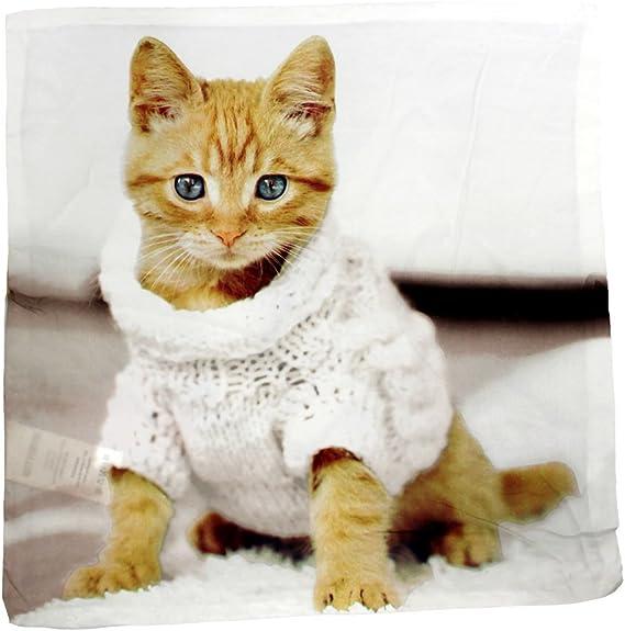 Gato con Jersey reversible decorativo funda para cojín funda de almohada de decoración para el hogar: Amazon.es: Bebé