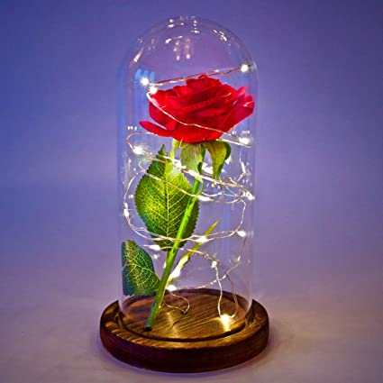 Amazoncom Daoruike Beauty And The Beast Rose Kit Glass Cloche Bell