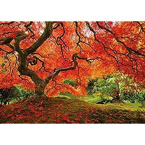 Educa 16310 Puzzle 1500 Pezzi Tematica Giardino Giapponese