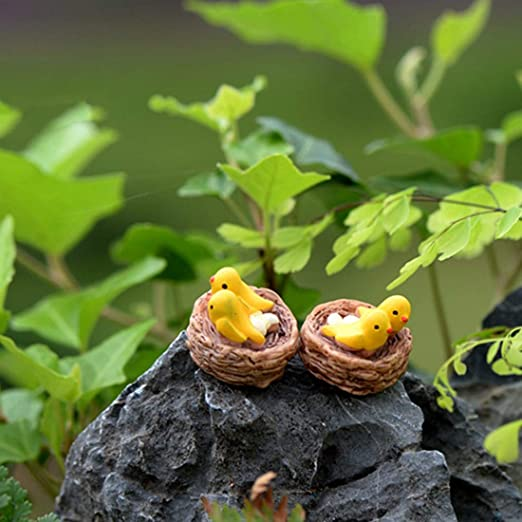 KWOSJYAL 4Pcs / Set Mini Nido con Pájaros Miniaturas De Jardín De Hadas Gnomos Terrarios De Musgo Figuritas De Resina para Accesorios De Decoración del Hogar: Amazon.es: Jardín
