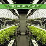 VIVOSUN 6500K 2FT T5 HO Fluorescent Grow Light