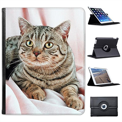 portrait-of-brown-striped-cat-for-apple-ipad-2-3-4-faux-leather-folio-presenter-case-cover-bag-with-