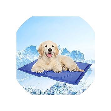Amazon.com: Colchón de refrigeración para perro, para ...