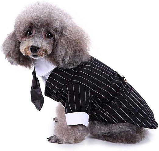 Camisa para Perros Ropa para Perros Pequeños para Mascotas De Cachorros,Traje A Rayas De Camisa,Traje De Corbata De Boda Príncipe De Perro,Ropa Formal De Caballero Camiseta De Perro,Negro,L: Amazon.es: Hogar