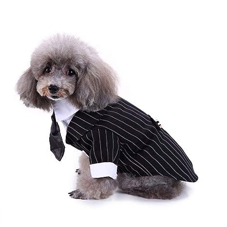 Camisa para Perros Ropa para Perros Pequeños para Mascotas ...
